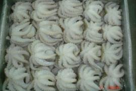 Hàn Quốc: 81% bạch tuộc cỡ nhỏ đông lạnh được nhập khẩu từ Việt Nam