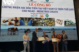 Chứng nhận ASC đầu tiên tại Việt Nam và trên thế giới cho ngao Meretrix Lyrata