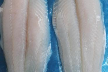 FROZEN WELL-TRIMMED PANGASIUS FILLET