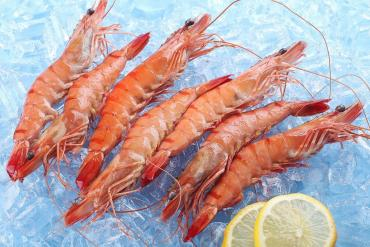 FROZEN COOKED HOSO BLACK TIGER PRAWN